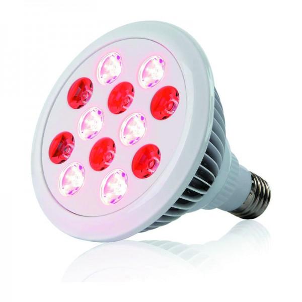 Bec cu Lumina Infrarosie 24W